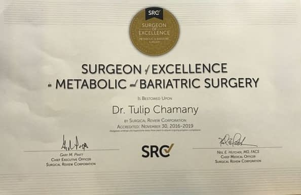 Surgeon of Excellence - Metabolic & Bariatric Surgery